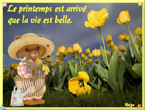 Le printemps est arrivé que la vie est belle